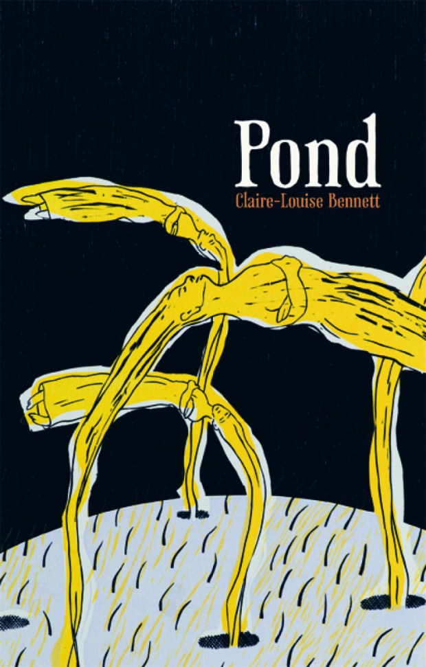 Claire-Louise Bennett: Pond