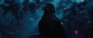 Crow project image